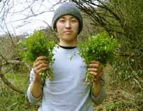 sqid_hunato2009.jpg